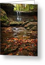 Blue Hen Falls In Autumn Greeting Card
