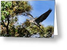 Blue Heron In The Trees Oil Greeting Card