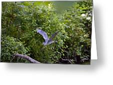 Blue Heron Journey I Greeting Card