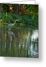 Blue Heron Magic Greeting Card