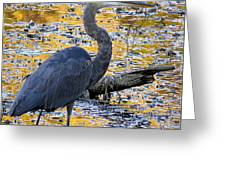 Blue Heron Naturally Greeting Card