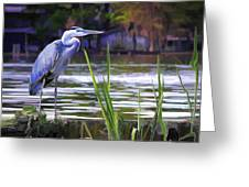 Blue Heron On The Bay Greeting Card