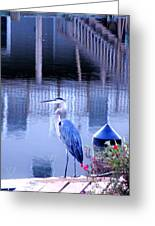 Blue Heron Reflections Greeting Card
