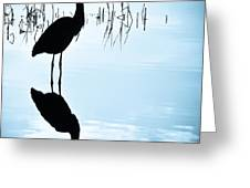 Blue Herons Greeting Card by Francis Trudeau
