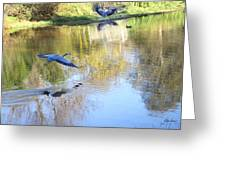 Blue Herons On Golden Pond Greeting Card