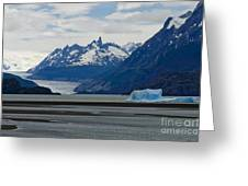 Blue Icebergs On Grey Lake In Patagonia Greeting Card