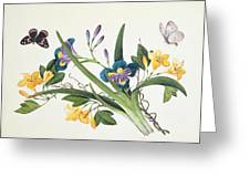 Blue Iris And Insects Greeting Card