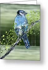 Blue Jay Mixed Media Greeting Card