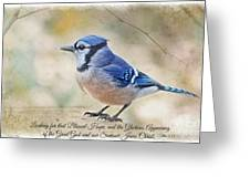 Blue Jay With Verse Greeting Card