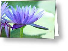 Blue Lily Greeting Card