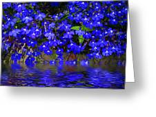 Blue Lobelia Greeting Card