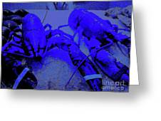 Blue Lobsters 21 Greeting Card