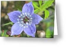 Blue Love Greeting Card