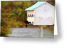 Blue Martin Home Greeting Card