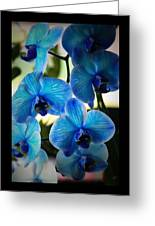 Blue Monday Greeting Card