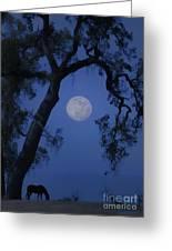 Blue Moon Horse And Oak Tree Greeting Card