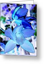 Blue Orchids Greeting Card