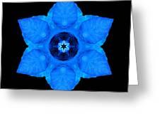 Blue Pansy II Flower Mandala Greeting Card by David J Bookbinder
