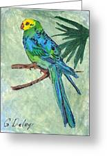 Blue Parakeet Greeting Card