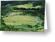 Blue Pastures Greeting Card
