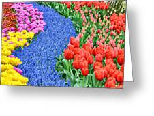 Blue Path Of Flowers Greeting Card
