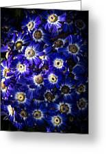 Blue Poem Greeting Card
