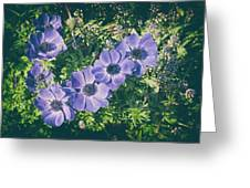 Blue Poppies Blooms Greeting Card