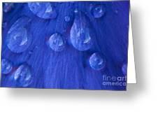Blue Rain Greeting Card