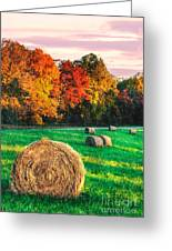 Blue Ridge - Fall Colors Autumn Colorful Trees And Hay Bales II Greeting Card
