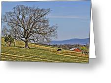 Blue Ridge Farm Greeting Card