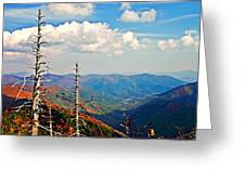 Blue Ridge Parkway Art-trees And Mountains Greeting Card