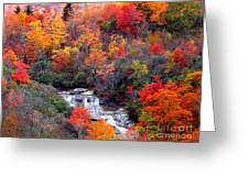 Blue Ridge Parkway Waterfall In Autumn Greeting Card by Crystal Joy Photography