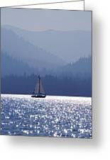 Blue Sailing  Greeting Card