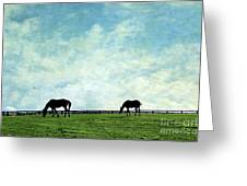 Blue Skies And Blue Grass Greeting Card