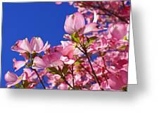 Blue Sky Art Prints Pink Dogwood Flowers Greeting Card