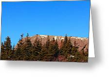 Blue Sky - Cliff - Trees Greeting Card