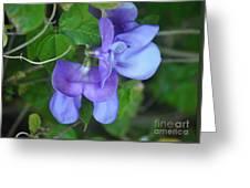 Blue Snail Vine Twins Greeting Card