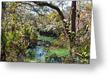 Blue Springs 1 Greeting Card