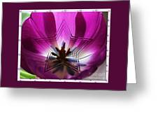 Blue Star Tulip Design 2 Greeting Card