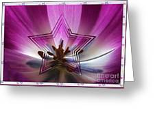 Blue Star Tulip Design Greeting Card