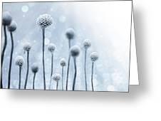 Blue Sunshine Greeting Card