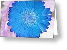 Blue Surprise Greeting Card