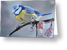 Blue Tit And Blossoms Greeting Card