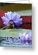 Blue Tranquillity Greeting Card