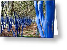 Blue Trees In Nature Greeting Card