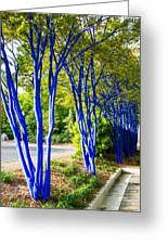 Blue Trunked Trees 2 Greeting Card