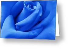 Blue Velvet Rose Flower Greeting Card