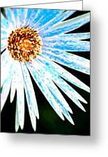 Blue Vexel Flower Greeting Card