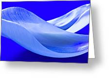 Blue White Flower Abstract  - Colorful Flowers Fine Art Photography - Digital Painting Greeting Card