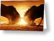 Blue Wildebeest Dual In Dust Greeting Card by Johan Swanepoel